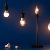 Bóng đèn & phụ kiện